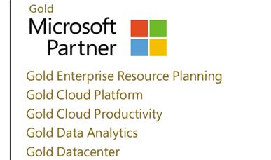 ERP implementation Microsoft Gold Partner